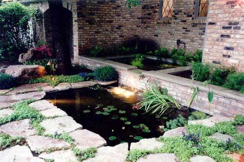 koi-small-garden-ponds.jpg