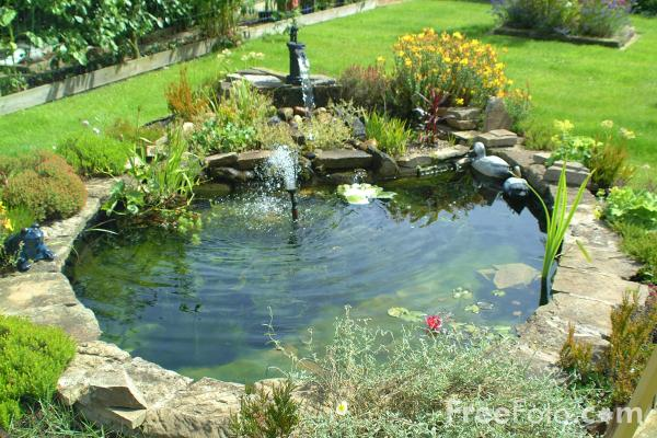 pond-water-features-2743-water-features-for-garden-pond-ideas-600-x-400.jpg
