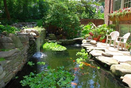 rectangular-koi-pond-landscaping-network_8689.jpg