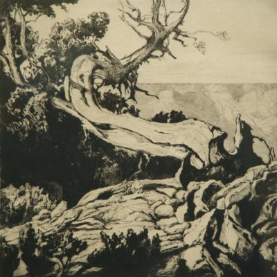 Carl Oscar Borg, On the Rim, Grand Canyon, print, 1932, 2005.2.1