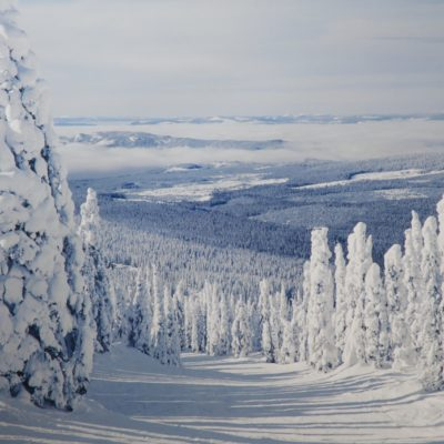 Ines E. Labunski Roberts, Winter Vista in the Rockies, ink jet print, 2003.2.1