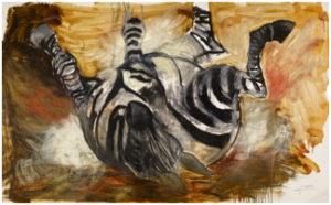 zebra-300x186.jpg