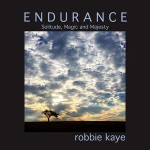 01_Endurance_Cover_2-300x300.jpg