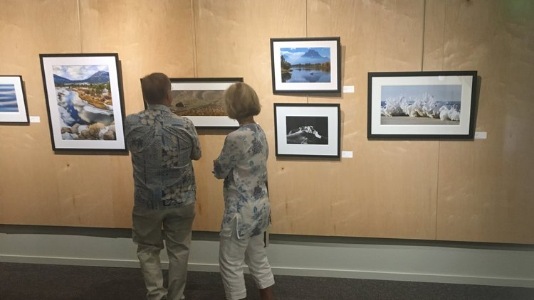 Where land meets water exhibit pic.jpg