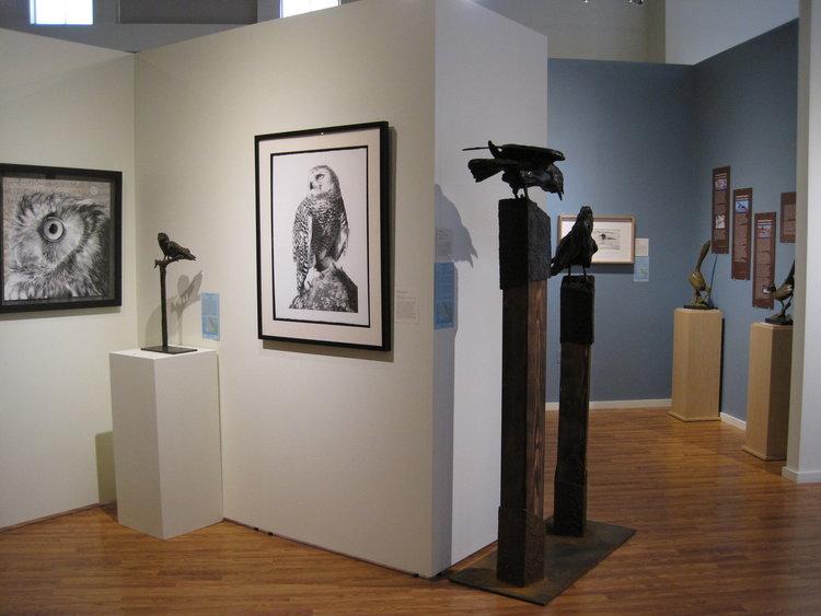 Birds in Art Exhibit pic 2.JPG