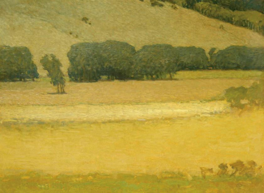 Summer Field, 1980