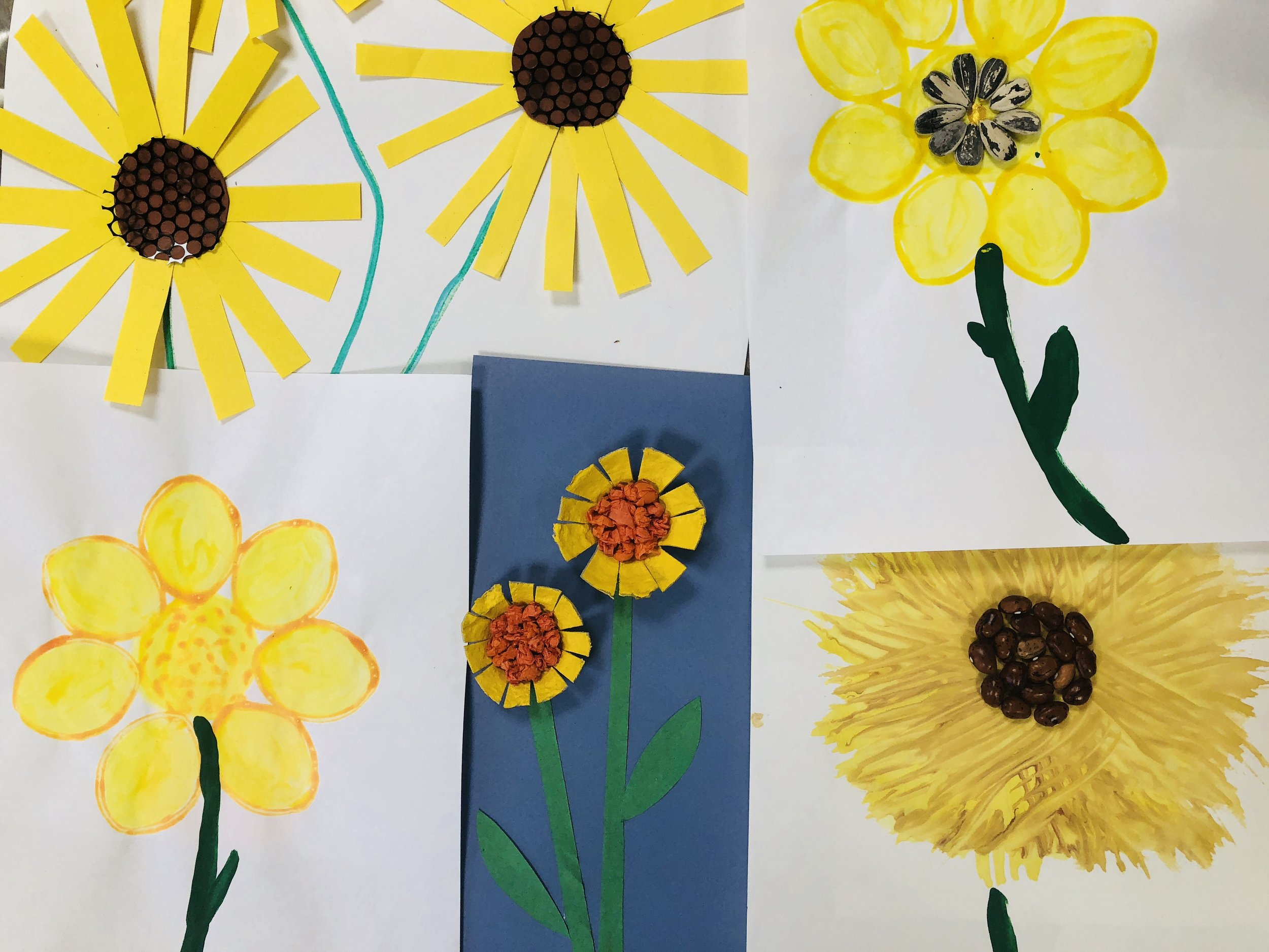 flowers-sep8.jpg