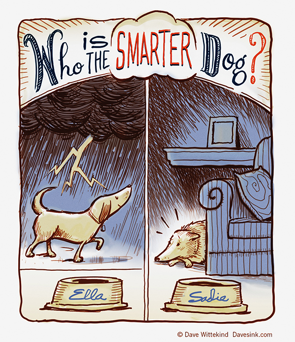 Who is the SmarterDog?