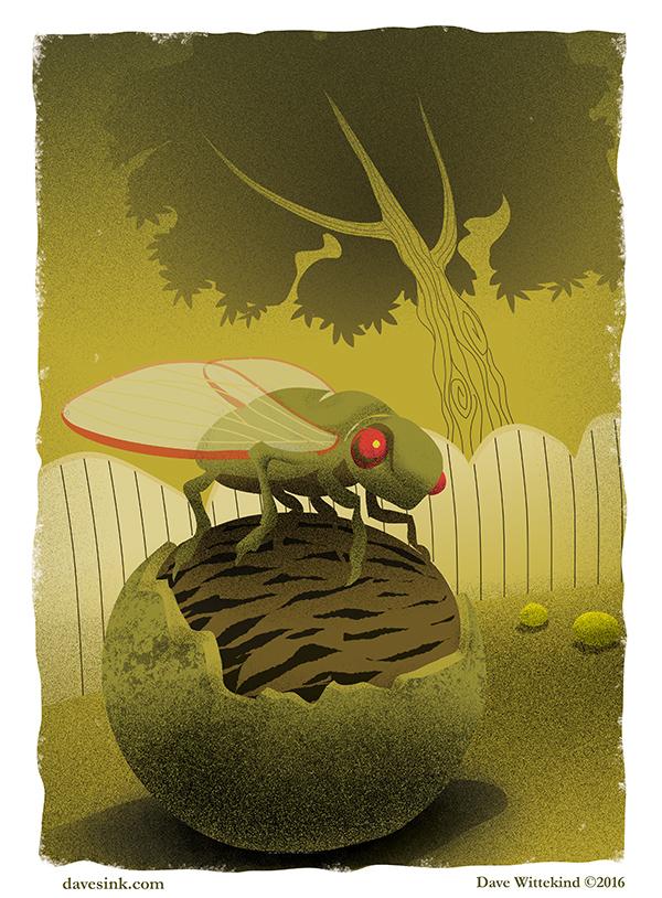 CicadaWalnuts.jpg