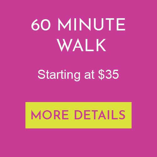 60 Minute Dog Walk