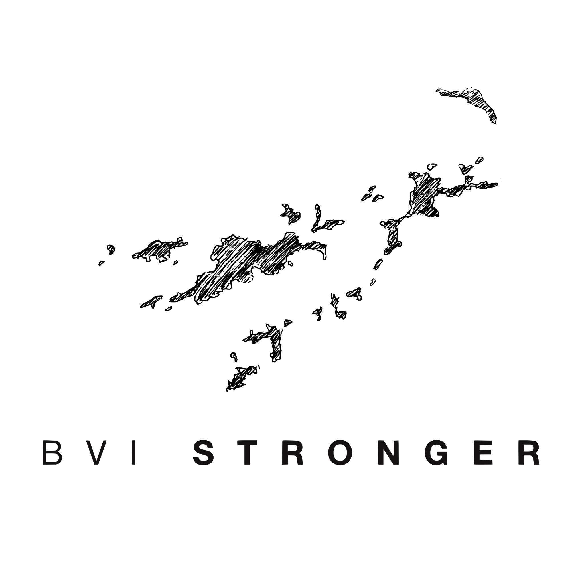 BVI stronger logo.png