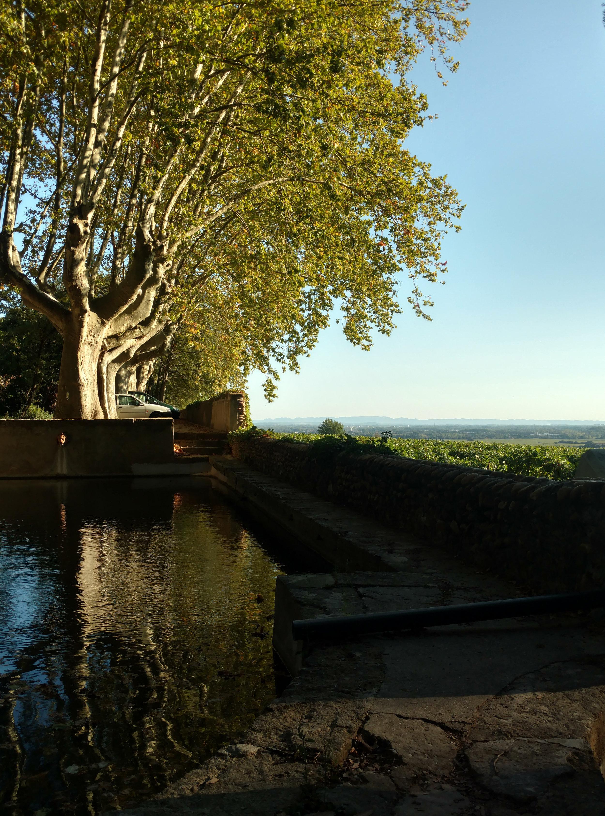 Chateau Neuf du Pape