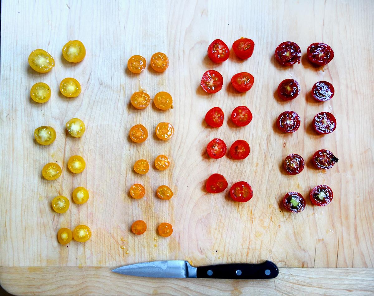 Tiny tomato rainbow corrected.jpg