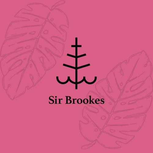 Branding • Illustration • Logo Development