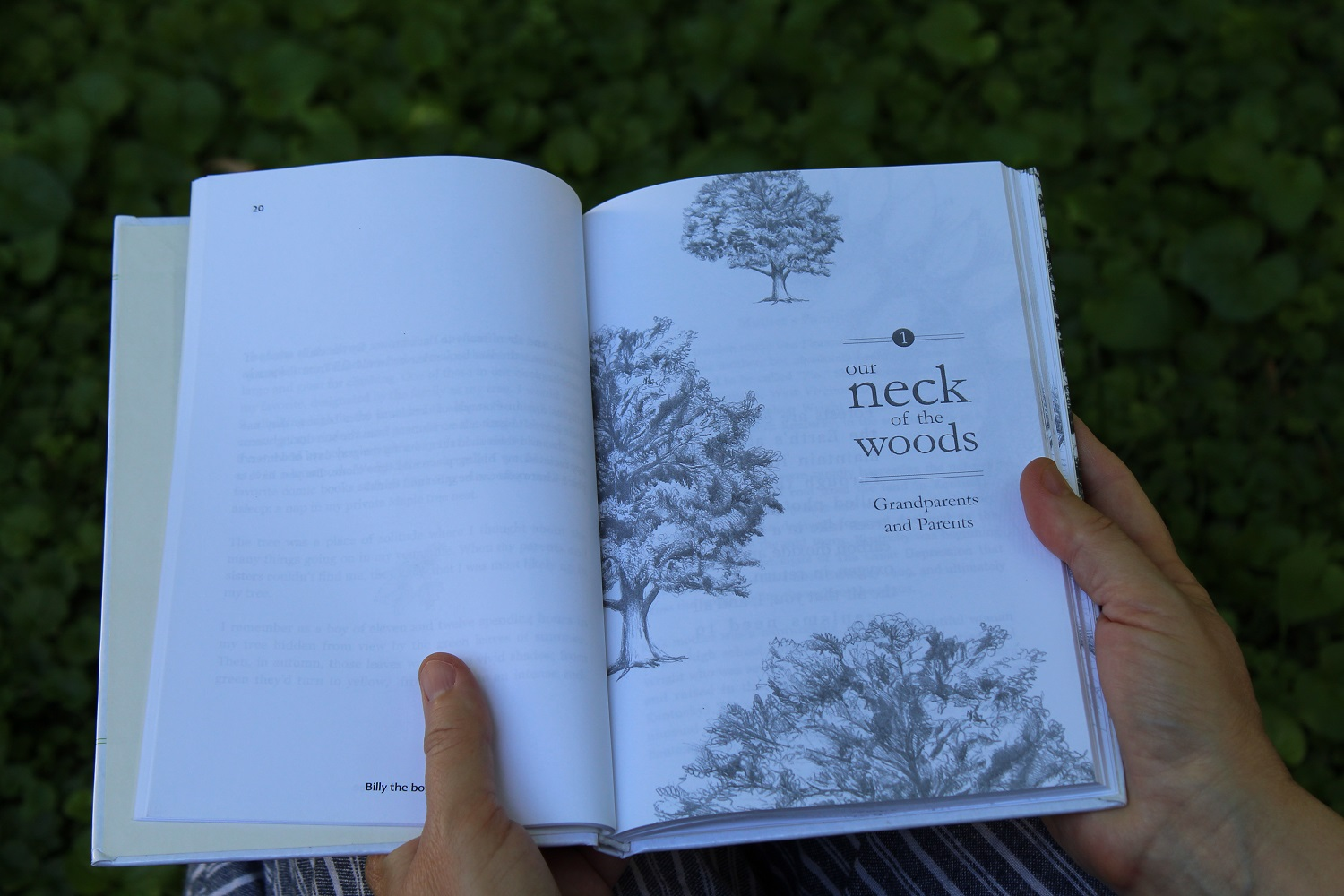 storied gifts legacy book interior, illustrations by David Borzo.jpg