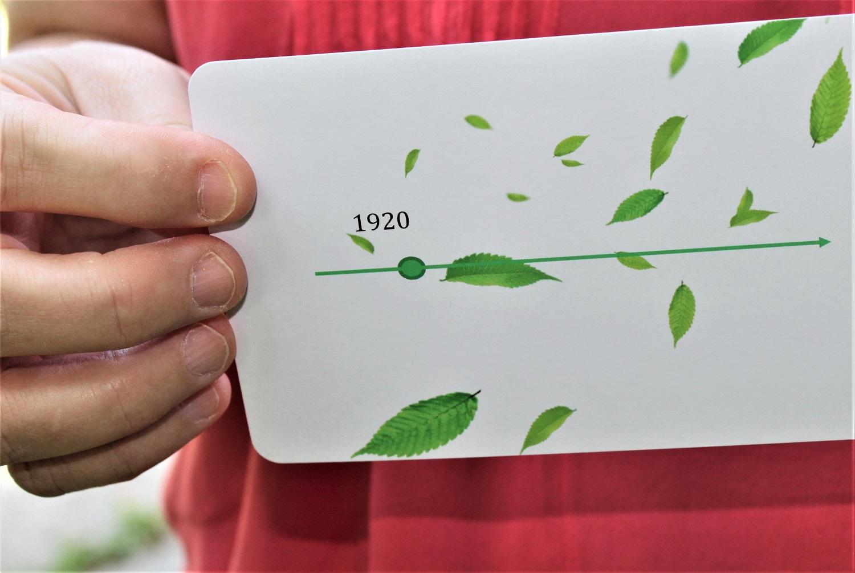 custom timeline triva card game back.jpg