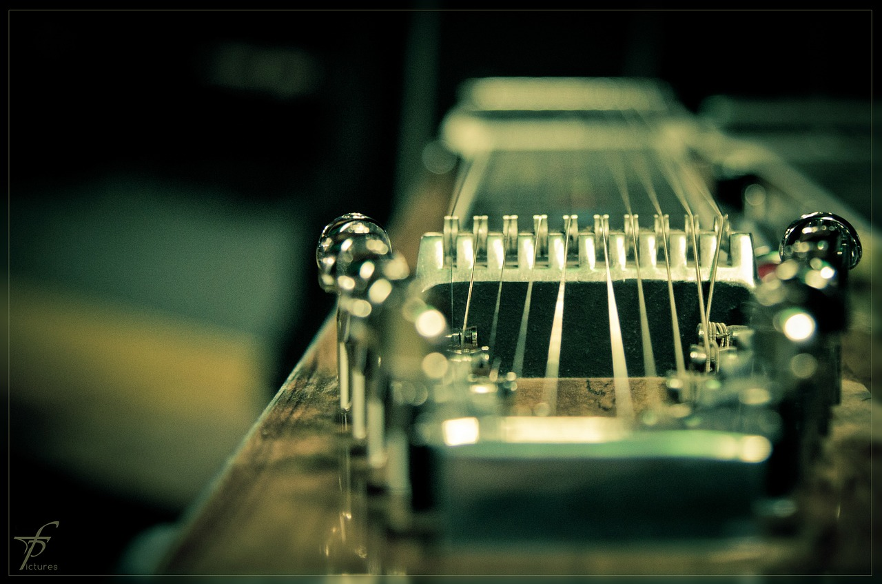 twenty-strings-288783_1280.jpg