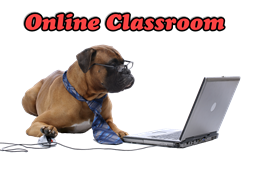 Online_Classroom_button-small.png