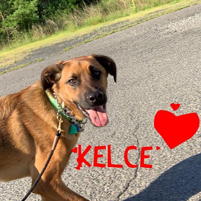 Kelce is da man!