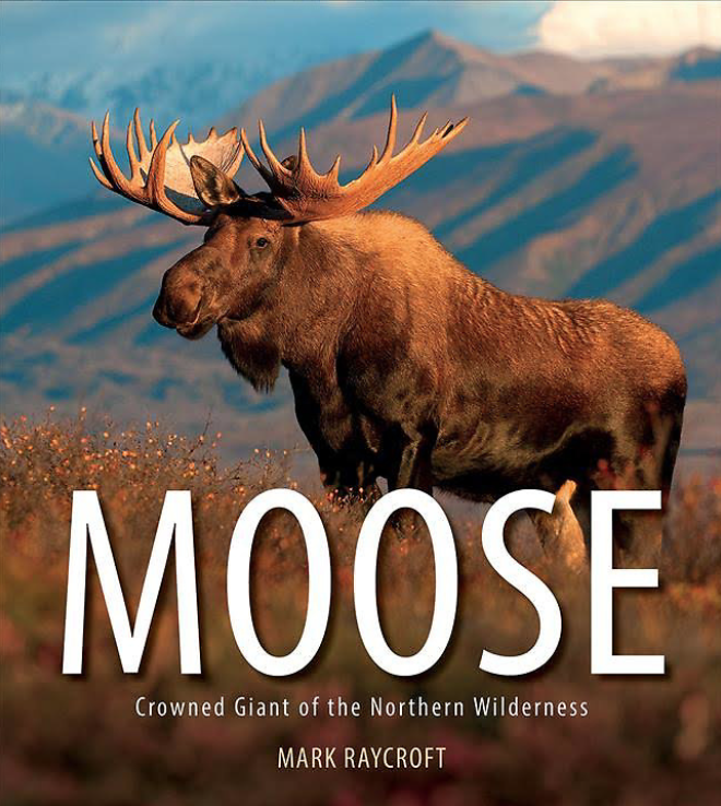 Moose_Book_Screen Shot 2018-06-18 at 8.24.11 AM.png