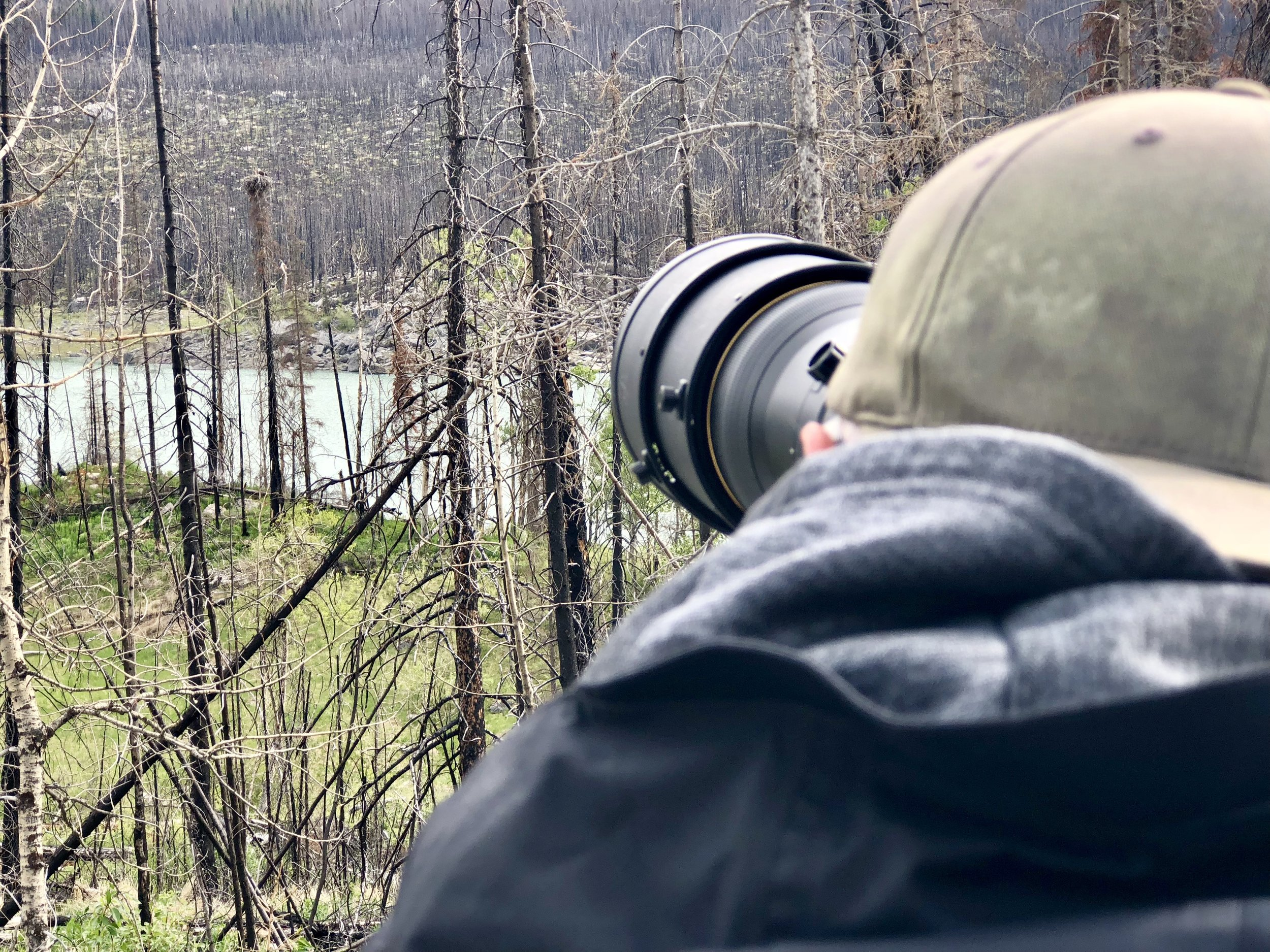 RON PHOTOGRAPHING EAGLE NEST.jpg