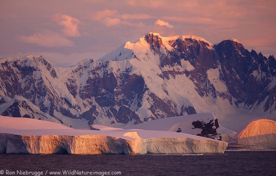 Antarctic-evening-lg.jpg