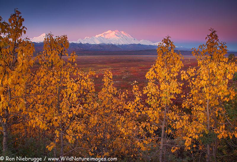 Mt-McKinley-fall-lg.jpg