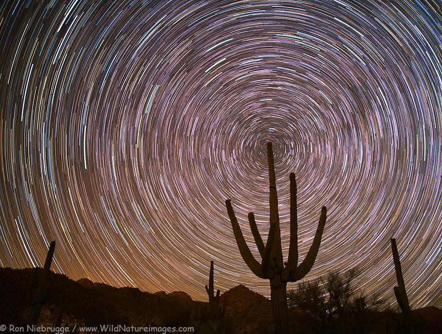 star-trails-cochie.jpg