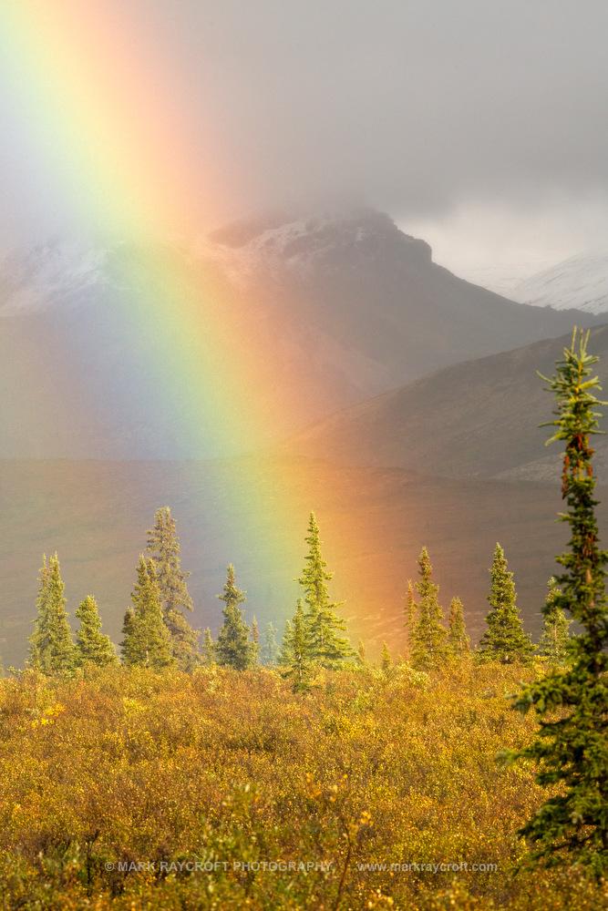 SC1500_Wilderness_Scenic_Mark_RaycroftC.JPG