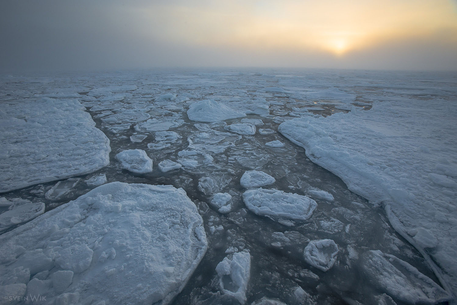 Drifting ice landscapes.jpg