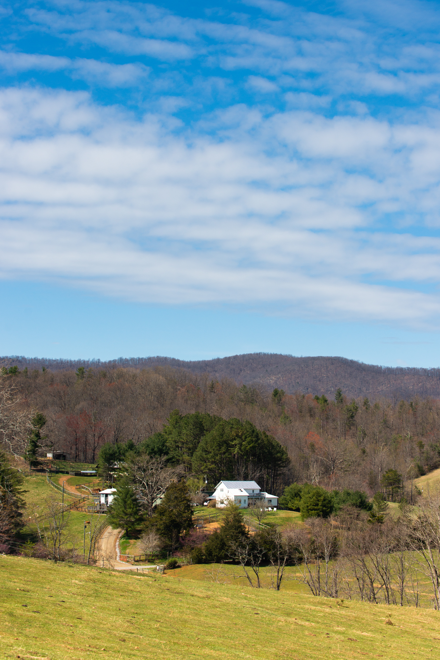 Blue Ridge Branding Photography at Chapman Knoll in Woolwine, Virginia
