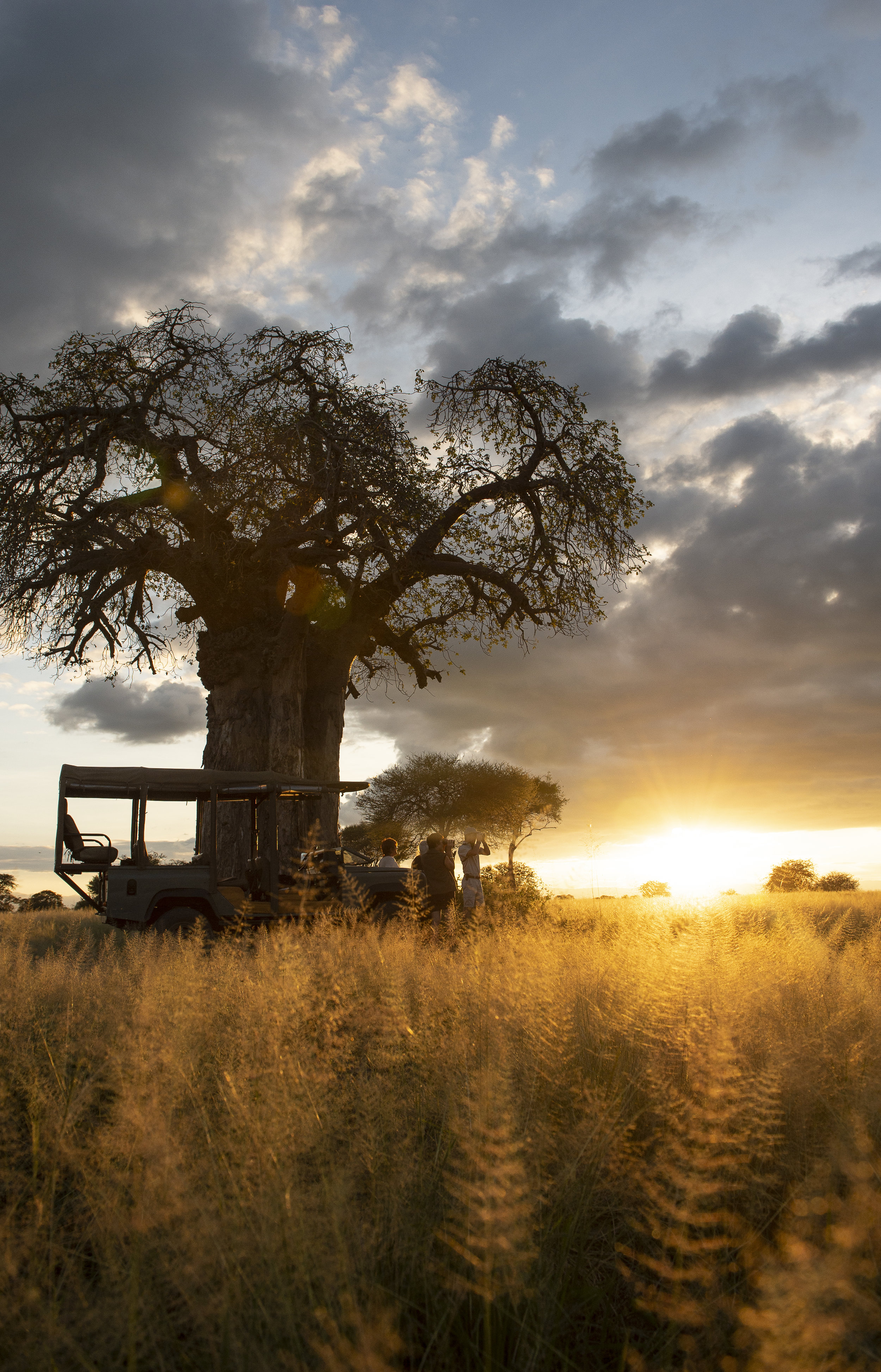 Join us in the beautiful wild of Tanzania… - One week of physical, mental and emotional rejuvenation at Tarangire Safari Lodge, located within Tarangire National Park, in Tanzania!