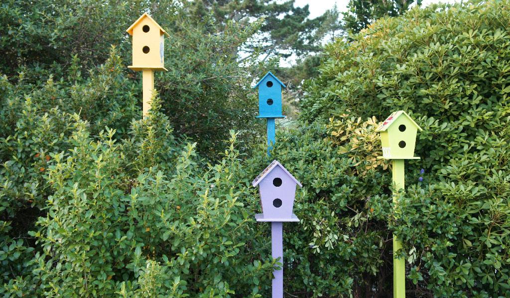 Birdtown-3.jpg