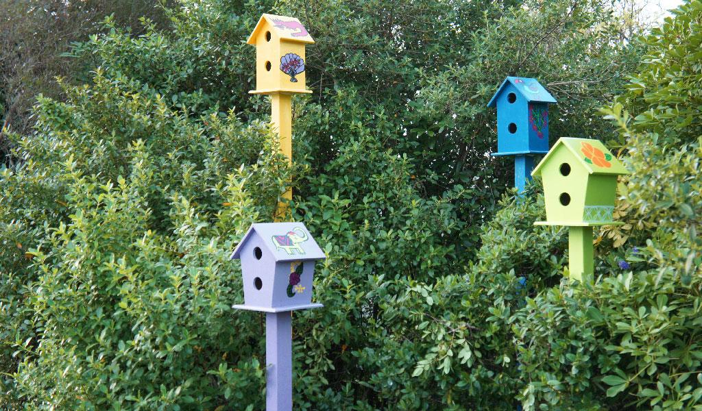 Birdtown-4.jpg