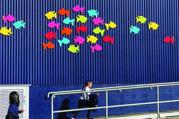 School of Fish_0001_IMG_4115.jpg