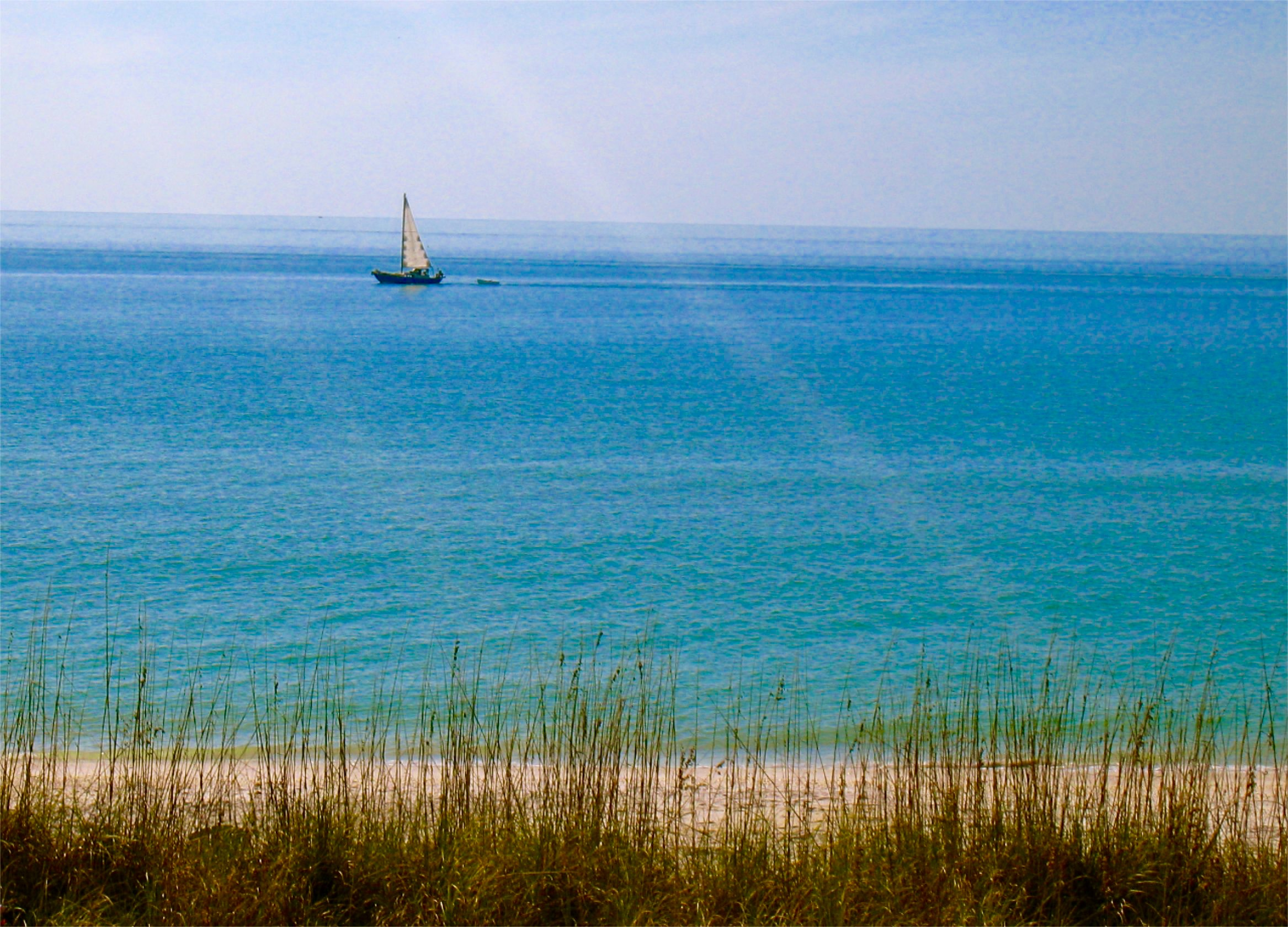 sailboat.jpg