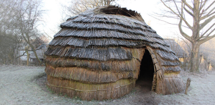 Mesolithic people constructed their houses from locally-available materials. Hazel poles often comprised the skeleton of the structure, and reeds like Phragmites australis (now endangered in Europe, but a common invasive in North America) were used as thatching. Mesolithic societies were experts at creating thriving societies whose only traces were stone tools and a more diverse landscape. Source .