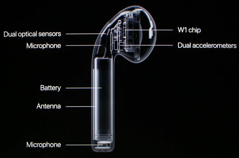 AirPods antennas are located on the outside edge for obvious reasons