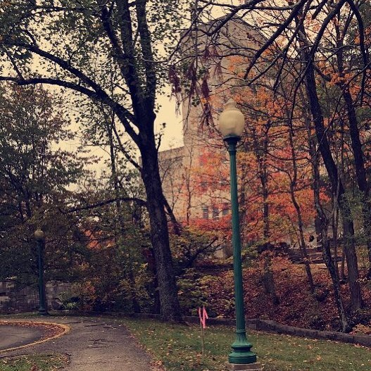 I wish Ballantine was as beautiful as the leaves in this photo.