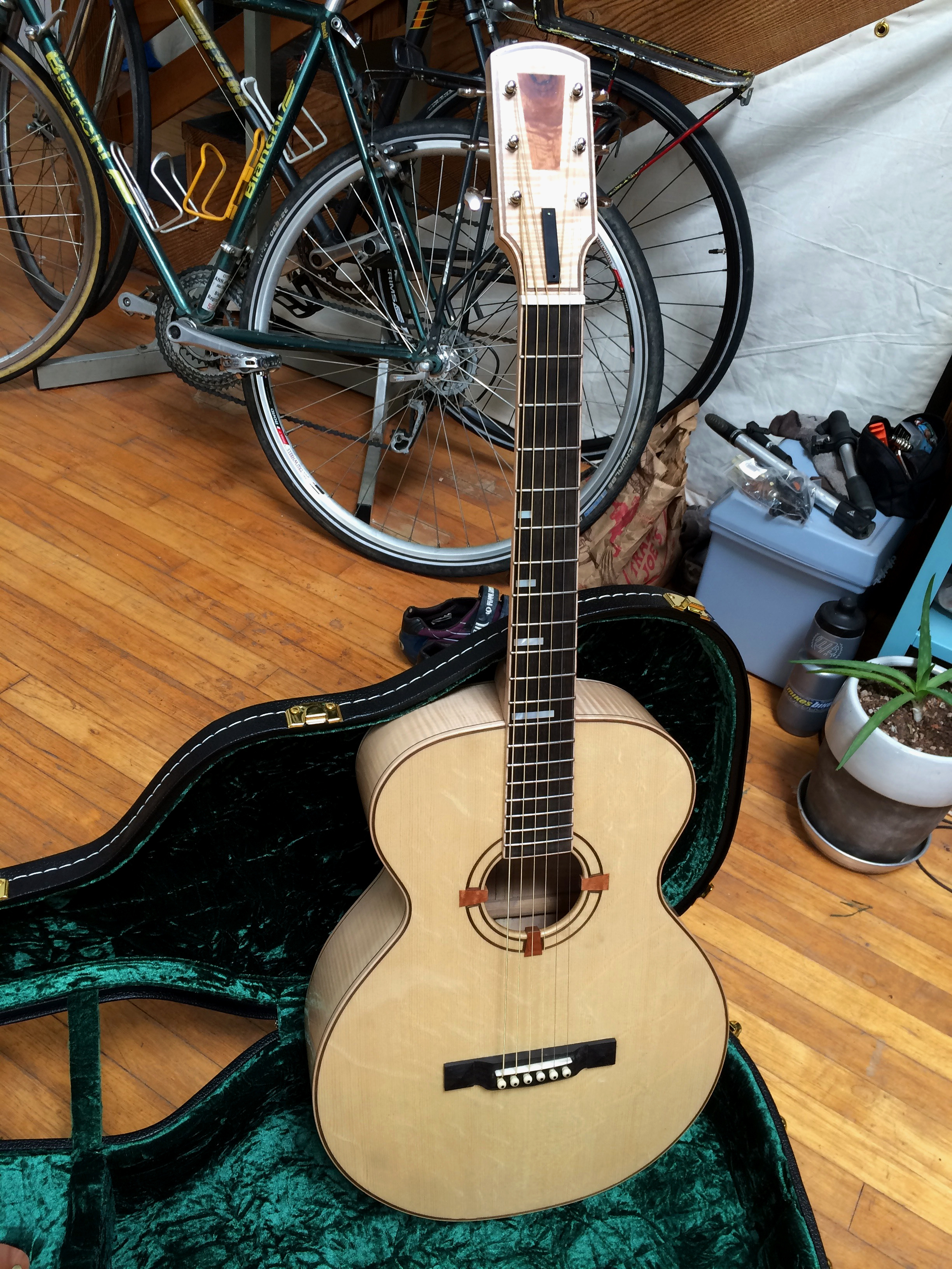 Bearclaw acoustic guitar top