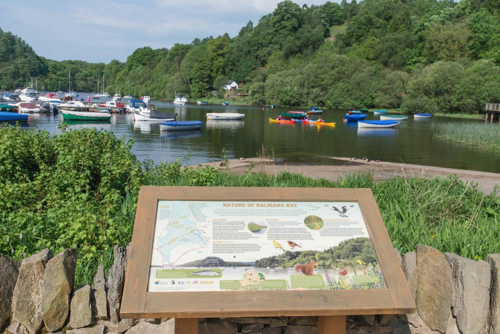 A nature information board at Weir's Rest, Balmaha