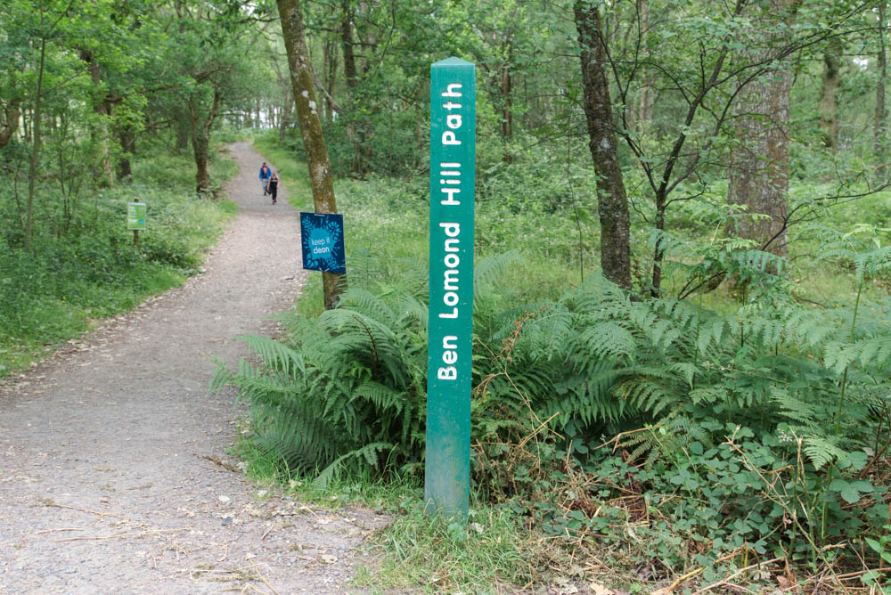 Ben Lomond Hill Path