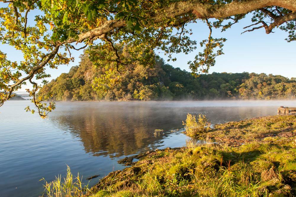 Inchcailloch-Island-Loch-Lomond-6899.jpg