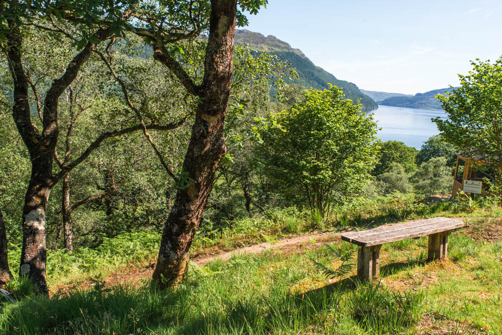 Cormonachan Woodlands, near Carrick Castle on the banks of Loch Goil. Home of red squirrel conservation and walks.