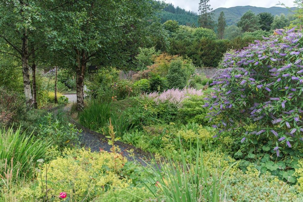 Glenfinnart-Walled-Garden-Ardentinny-Argyll-Forest-Park-2097.jpg