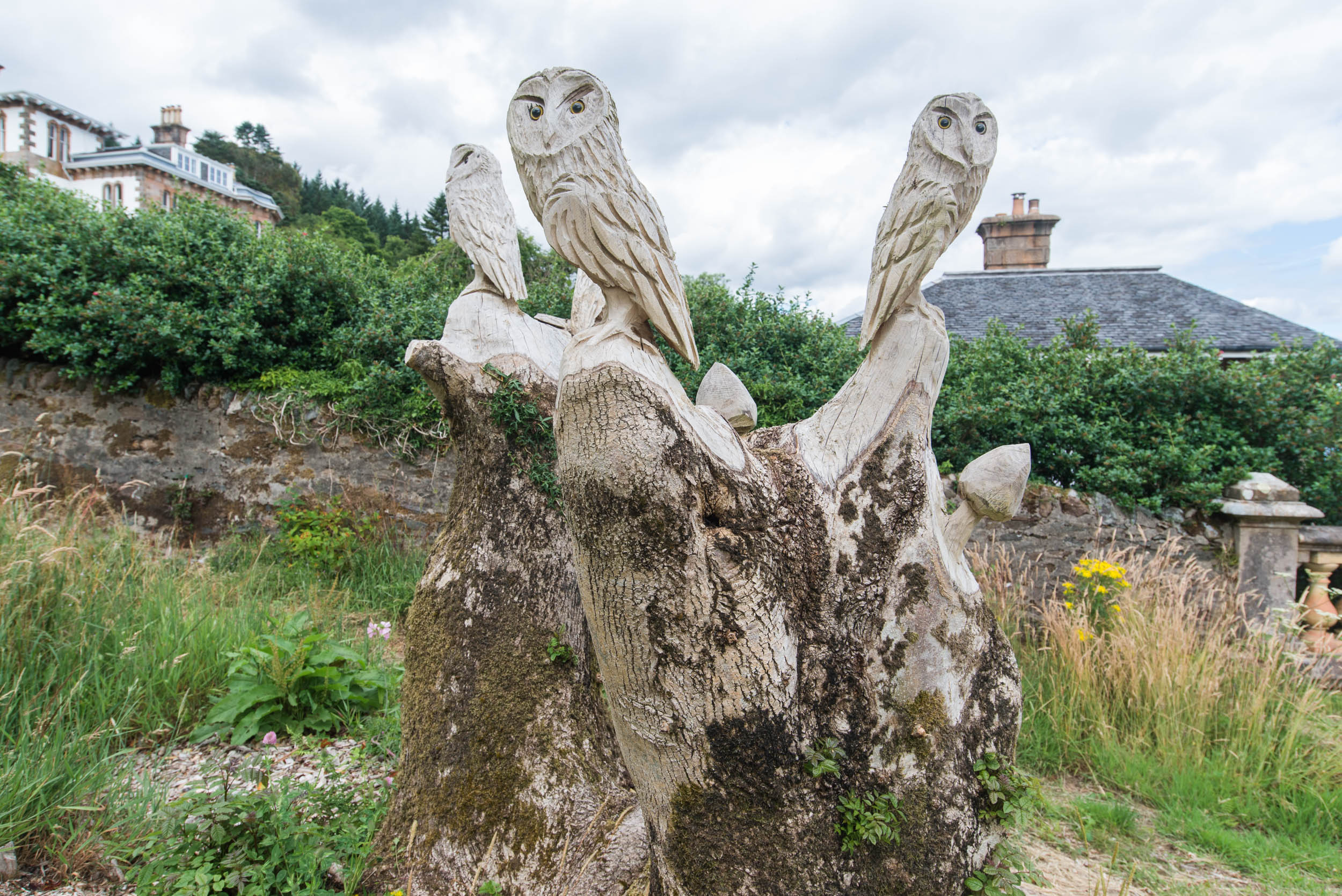Blairmore Gardens, Cowal, Argyll