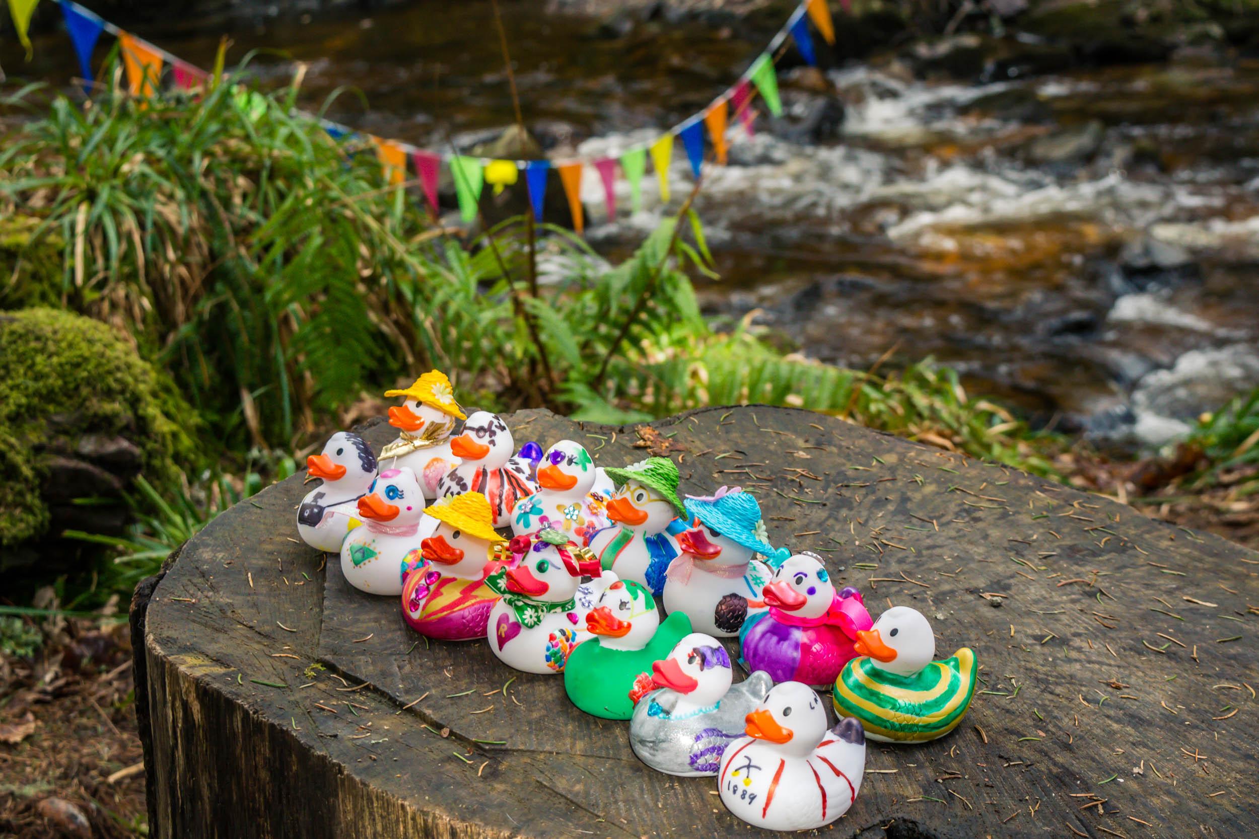 Easter Duck Race, Lodge Aberfoyle