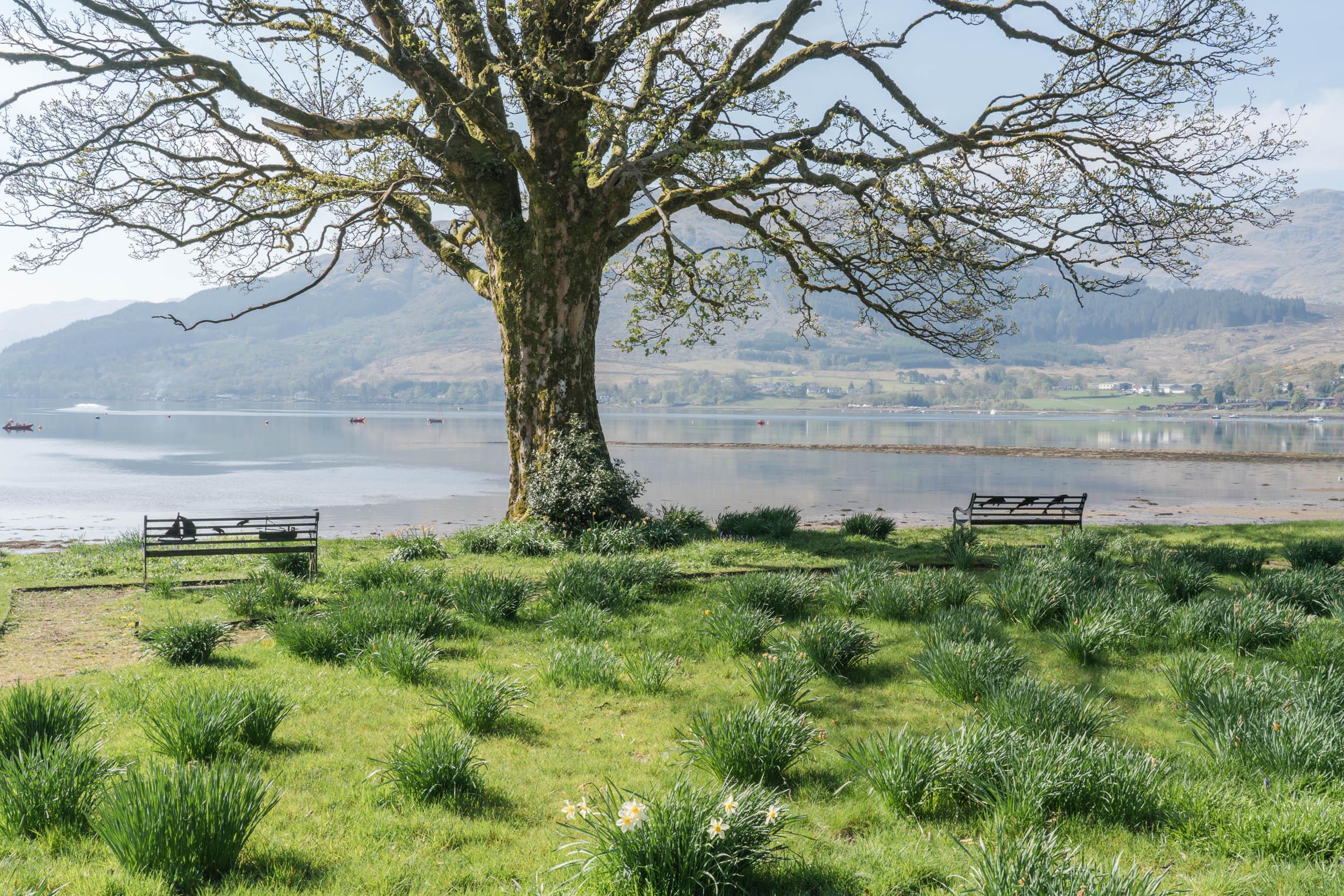 Loch-Goil-Walk-01587.jpg