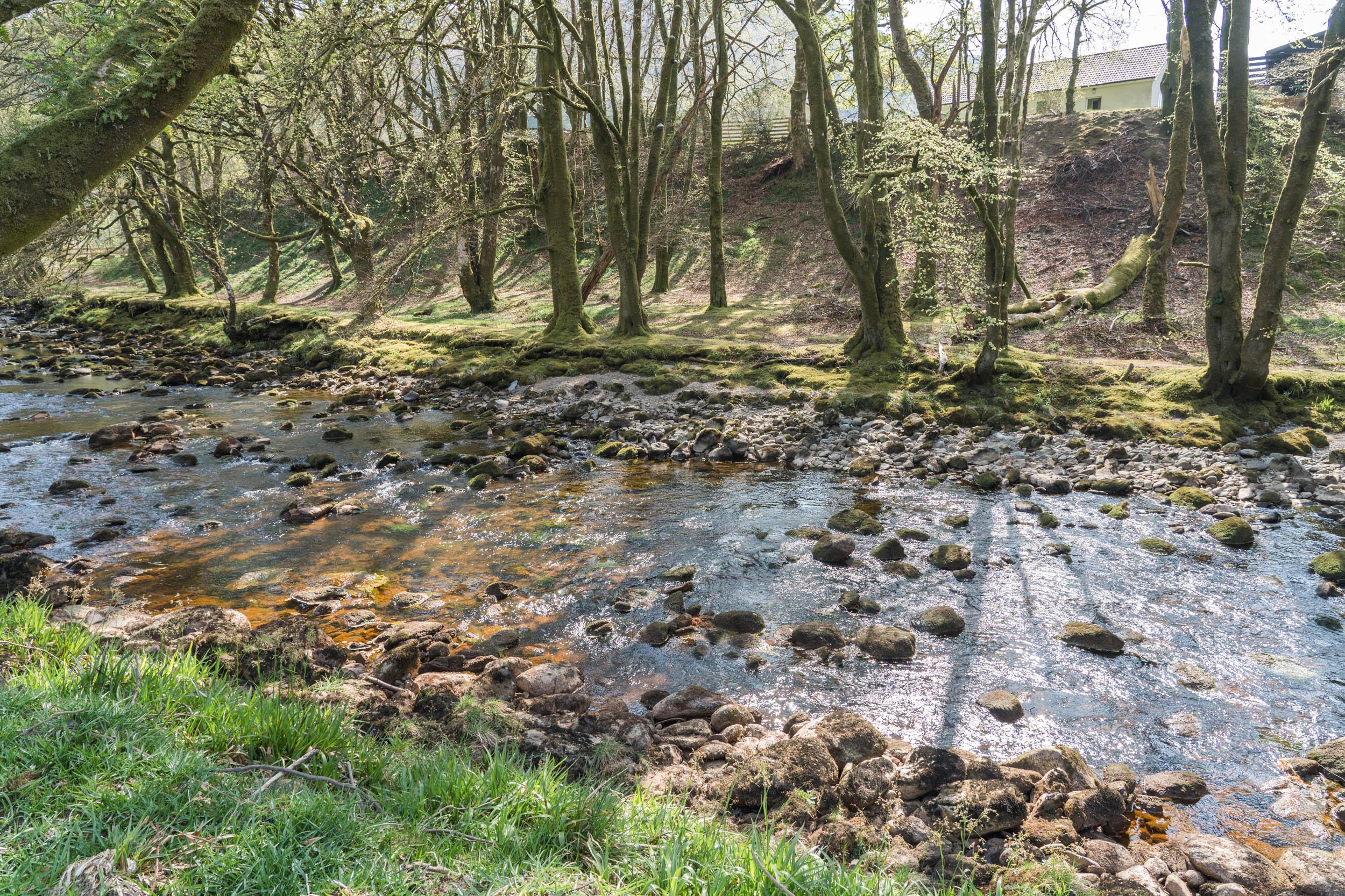 Loch-Goil-River-Walk-01617.jpg