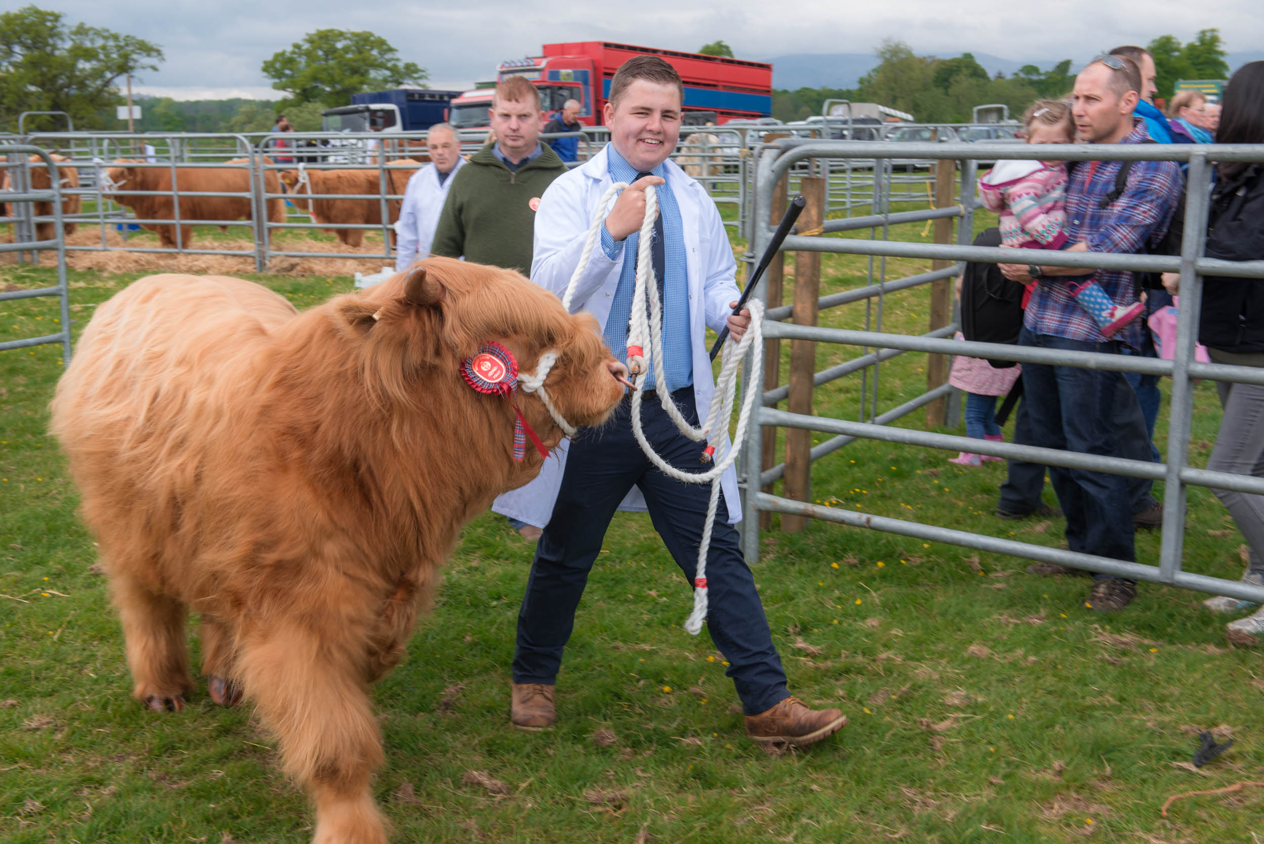 Drymen Show Livestock & Animals